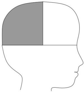 頭のイラスト.jpg